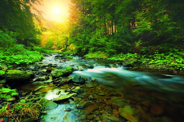 Erlebnismesse 2017 - Wasser & Wald
